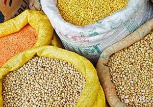 закуповуємо зерно